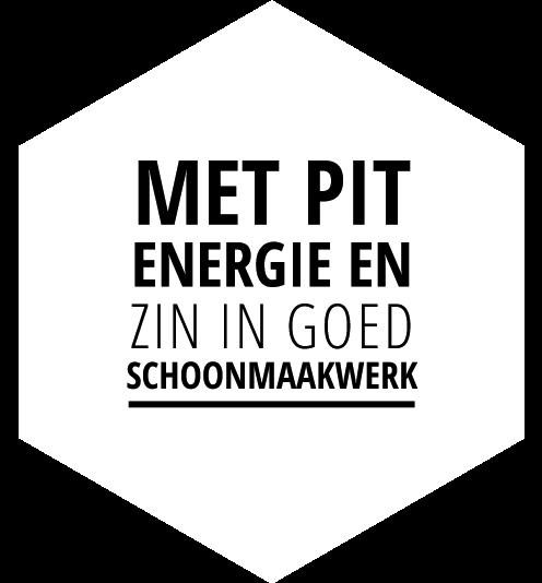 Mccoy_pit_energie